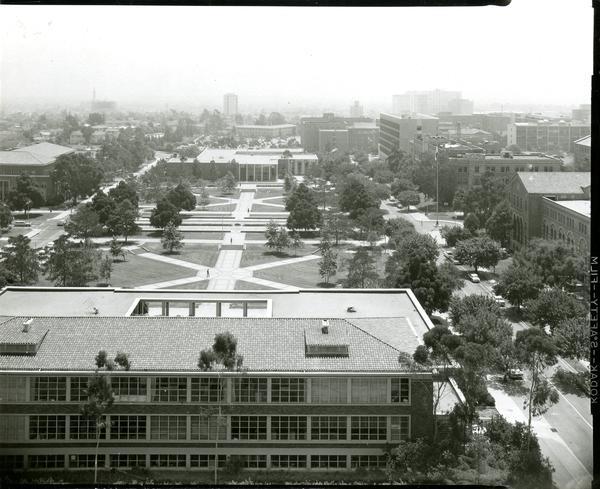 University of California, Los Angeles, courtyard, ca. 1950's