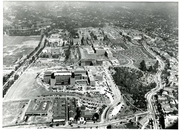 Aerial view of University of California, Los Angeles, September 23, 1953