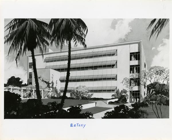 Sketch of Botany Building exterior from rear
