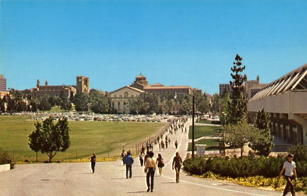 Postcard showing Bruin Walk looking east from dormitory area, ca. 1970