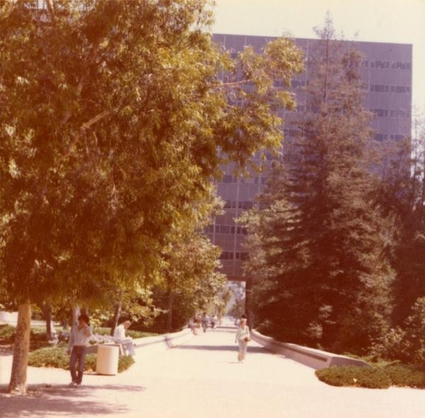 Bunche Hall exterior through trees, 1978