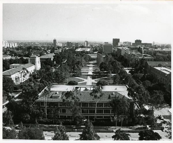 Looking east towards UCLA campus