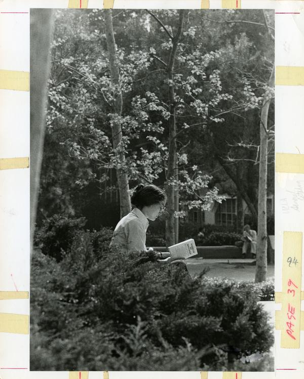 Woman reading on bench