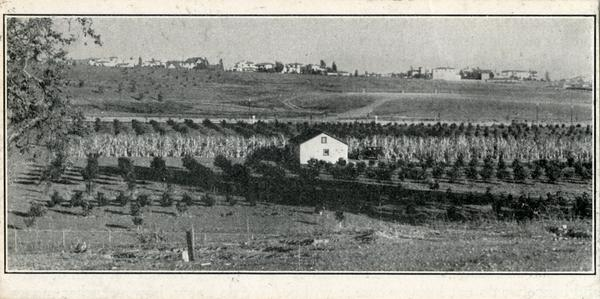Newspaper photograph of original site of UCLA campus
