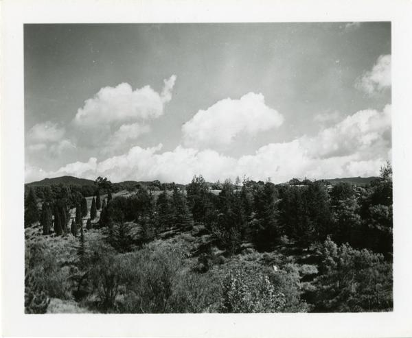 Scenery surrounding the campus photographed by Ralph Cornell, March 15, 1948