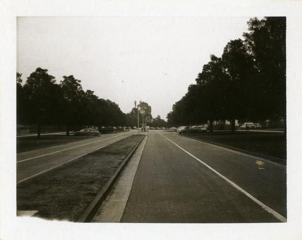 Street on campus