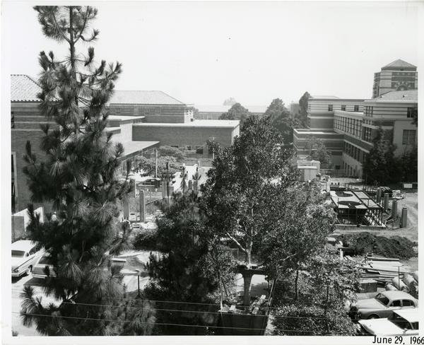 View through building window over campus, June 1966
