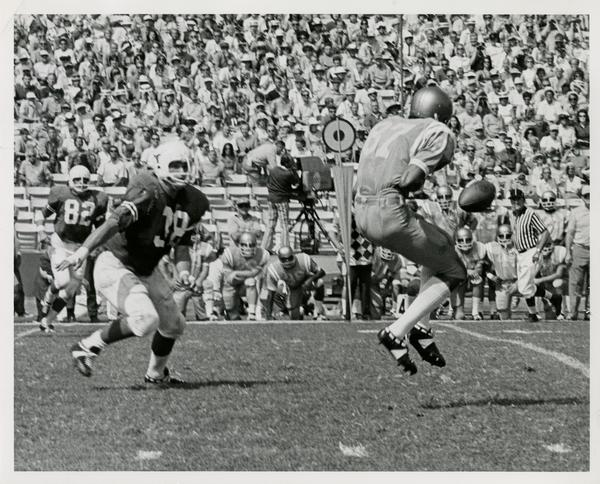 UCLA flankerback Reggie Echols making a leaping catch during a football game, September 18, 1981