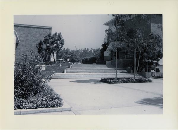 View of Humanities Court and steps going north, ca. 1963