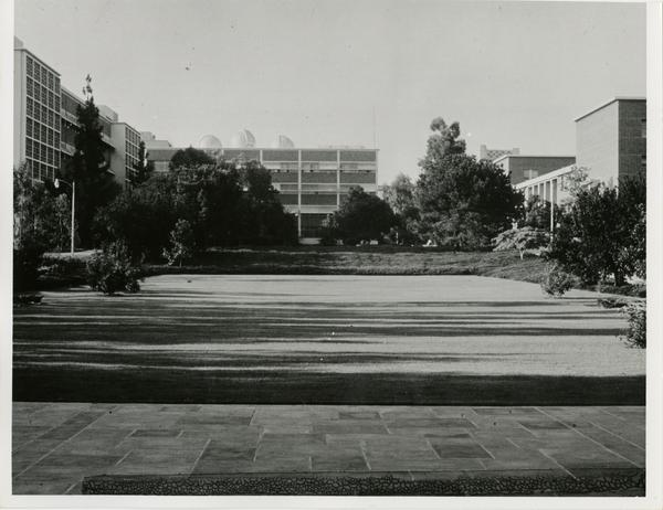 Courtyard of the Life Sciences building with a view of other buildings in the background