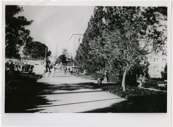 Students walking near the Life Sciences building