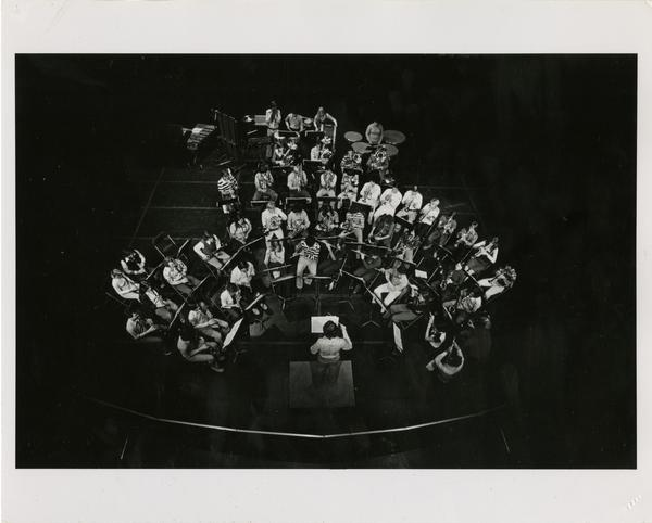 Orchestra performance on stage