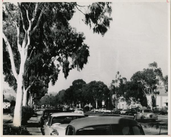 View of President's Row, ca. 1962