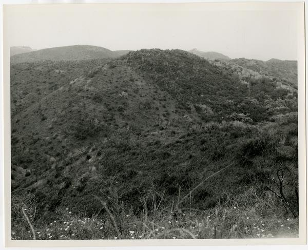 View of Santa Monica Mountains
