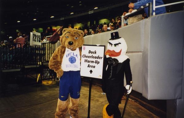 Joe Bruin with Duck mascot, March 1998
