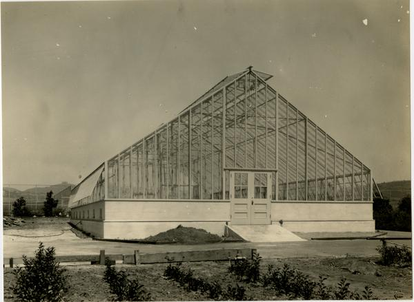 View of greenhouse, September 14, 1931