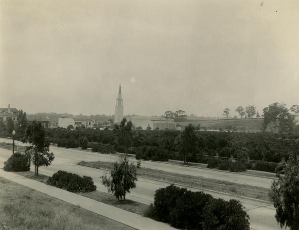 View of Subtropical Horticulture Orchard, 1934