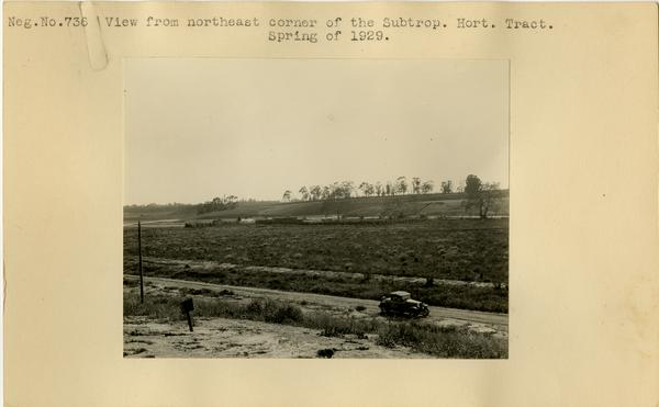 View from northeast corner of the Subtropical Horticulture Tract, ca. Spring 1929
