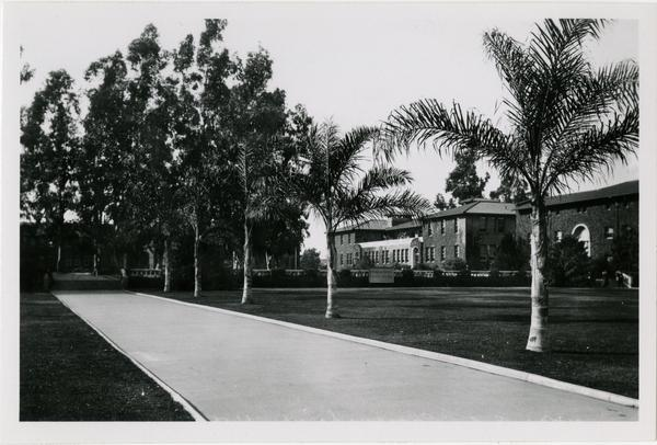 View down walkway of Vermont Ave campus, ca. 1925