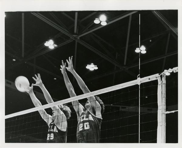 Two UCLA volleyball players reaching for the ball during a game