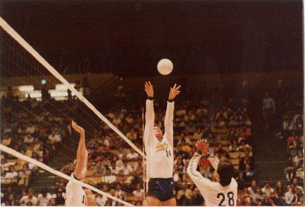 UCLA volleyball player reaching for the ball during a game, 1983