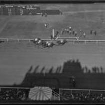 "Birdseye view of race horse ""Las Palmas"" winning the first race at Santa Anita Park on Christmas Day, Arcadia, 1934"